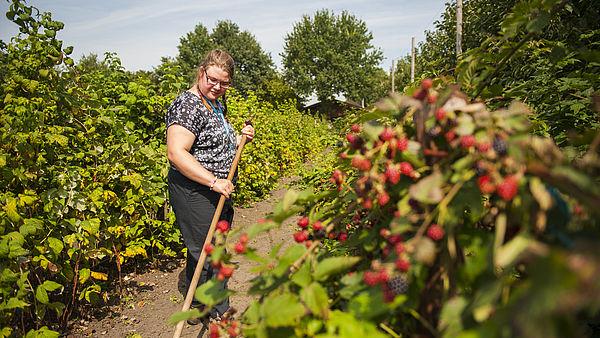 Vrouw werkt op zorgboerderij De Eekhoeve